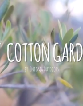 Mount Cotton Garden